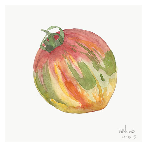 heirloom tomato // monica loos