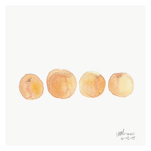 apricots // monica loos