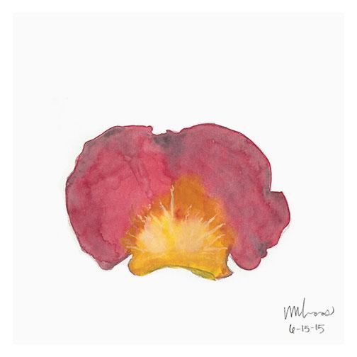 fallen petal // monica loos