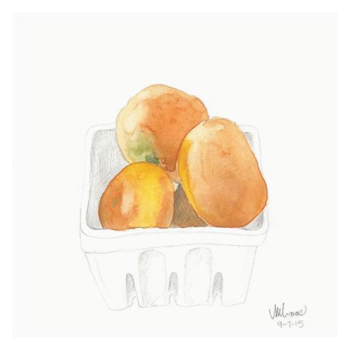 mandarin oranges / monica loos