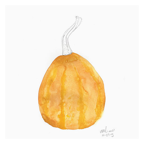 small pumpkin | monica loos