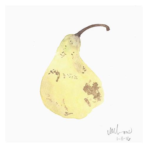monica loos // concorde pear