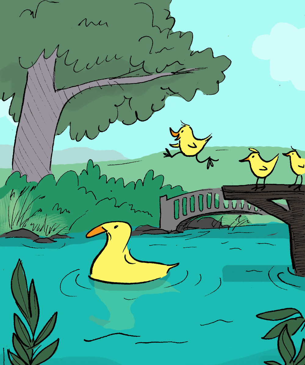 swimming ducks.jpg