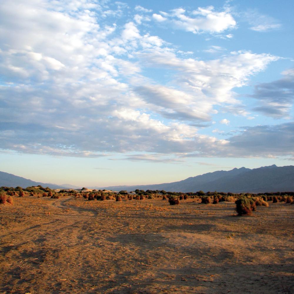 Desert and Sky [RGB 3000 CS103 TL036].png