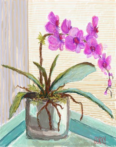 Orchid Landia