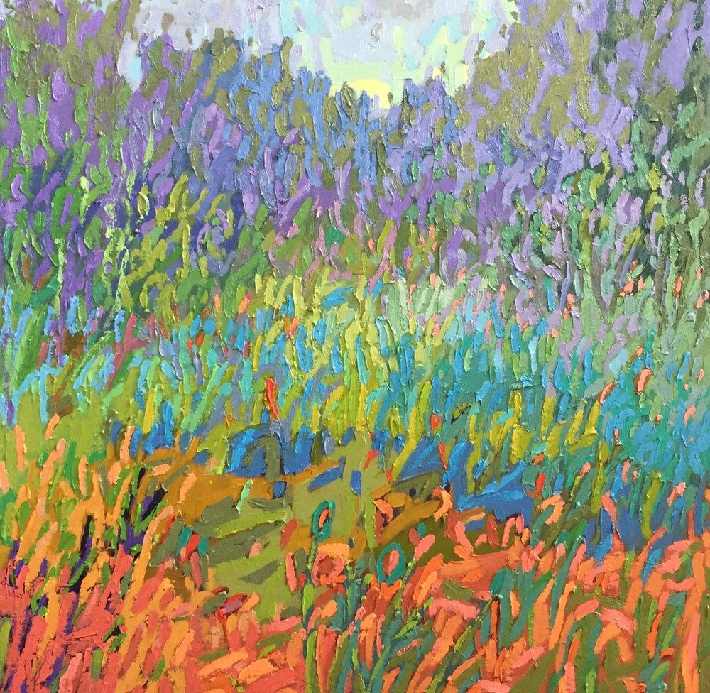 Color Field #48