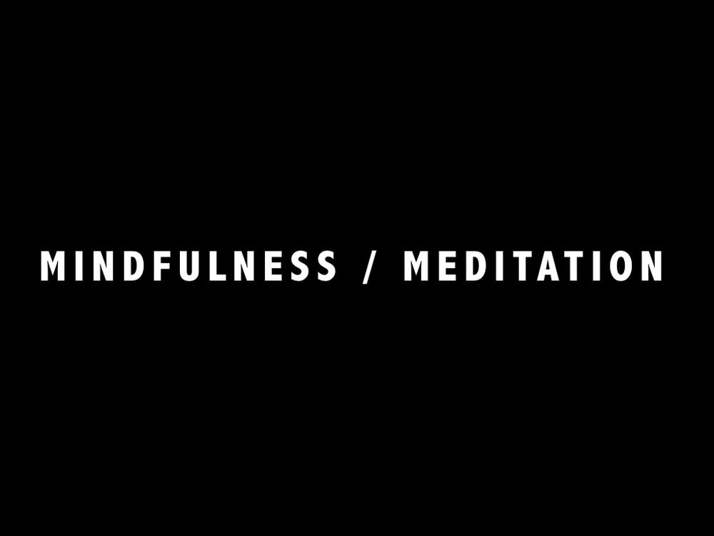 Mindfulness Lecture.031.jpeg