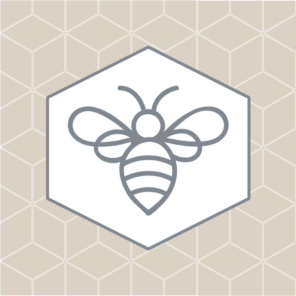 Bee Street Studio brand // print