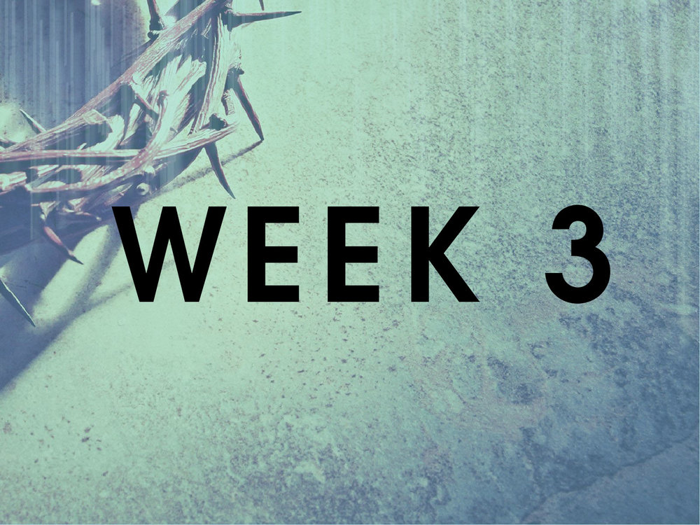 week 3a bw.jpg