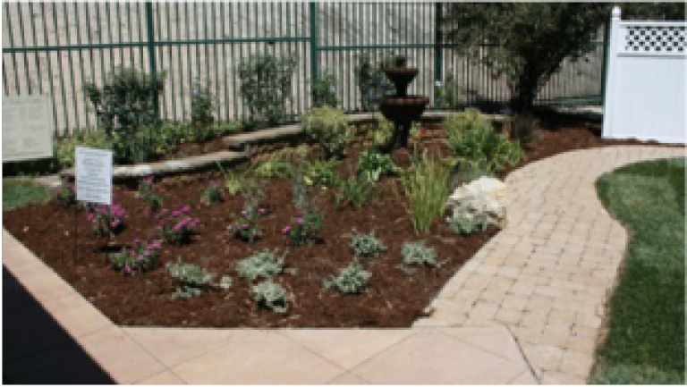 Click   HERE   for a list of fire resistant landscaping