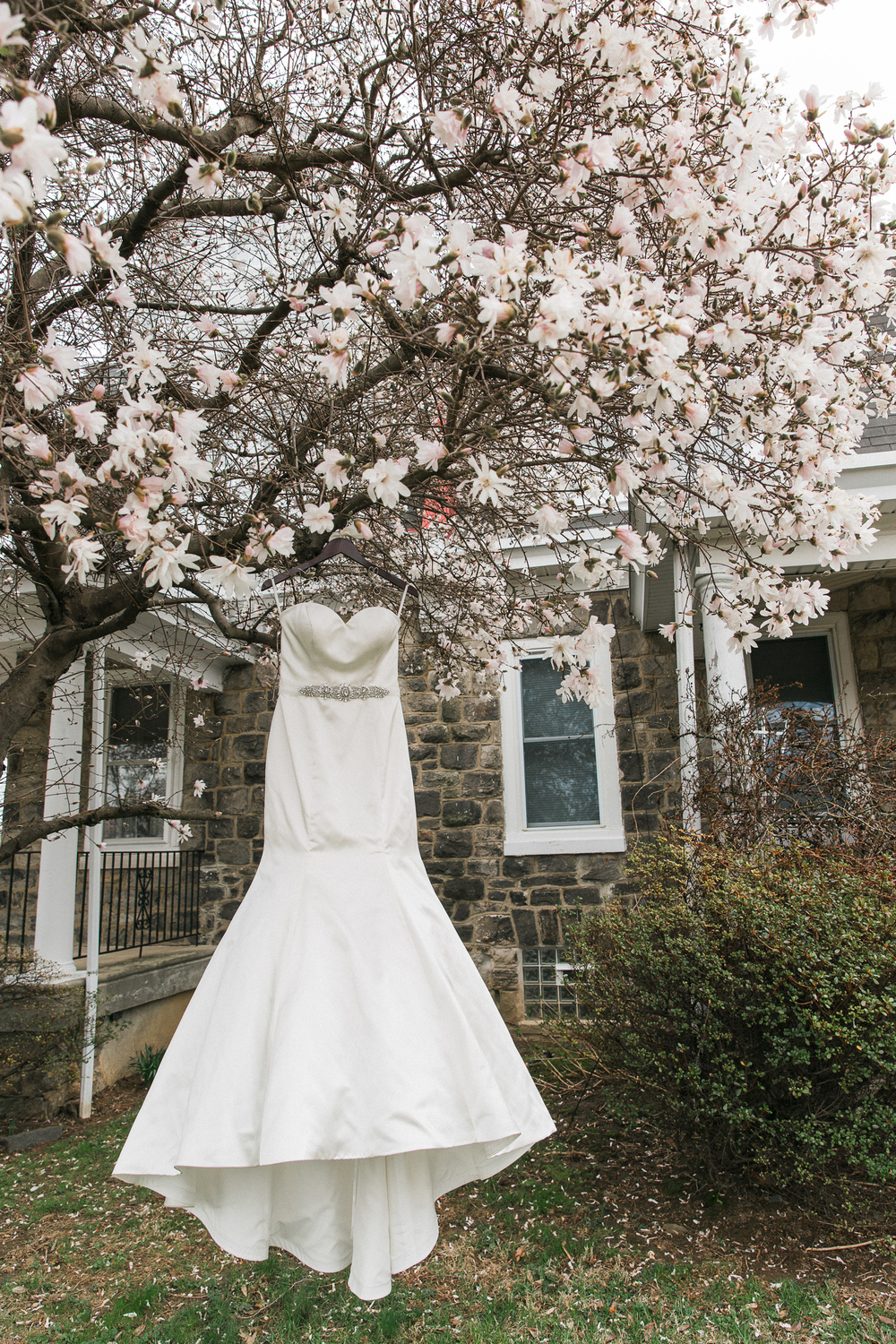 Flowering Tree with Wedding Dress