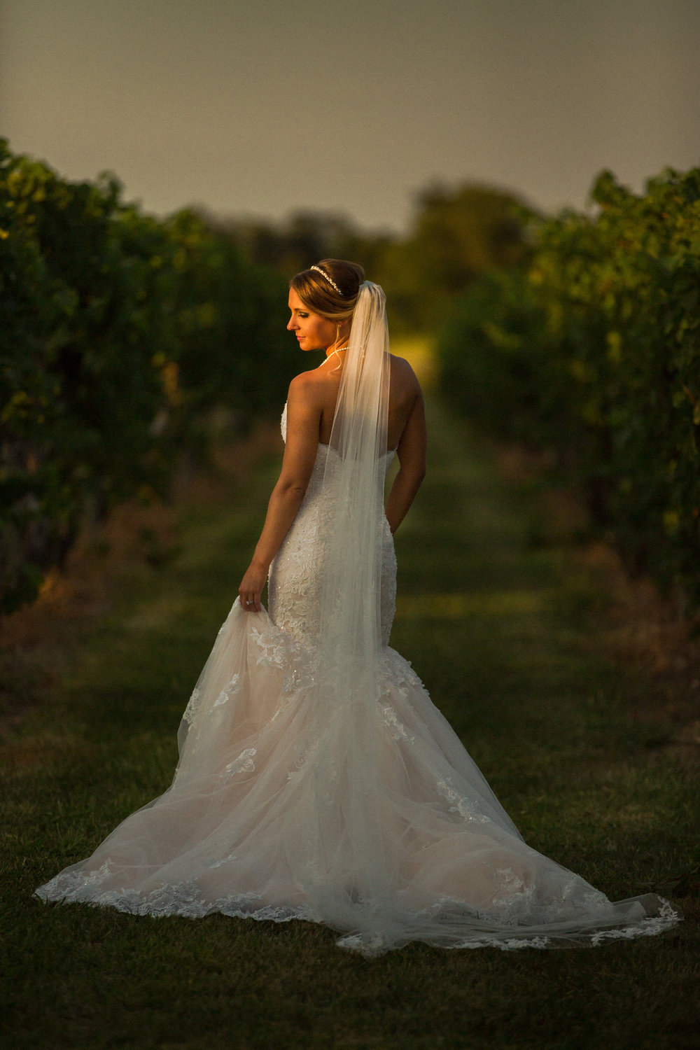 TOMASELLO WINERY WEDDING BRIDAL PORTRAIT