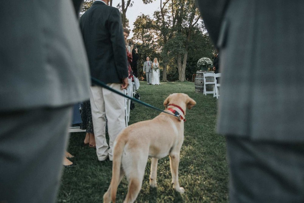 Red Maple Vinyard Wedding Ceremony NY Dog Bride.jpg