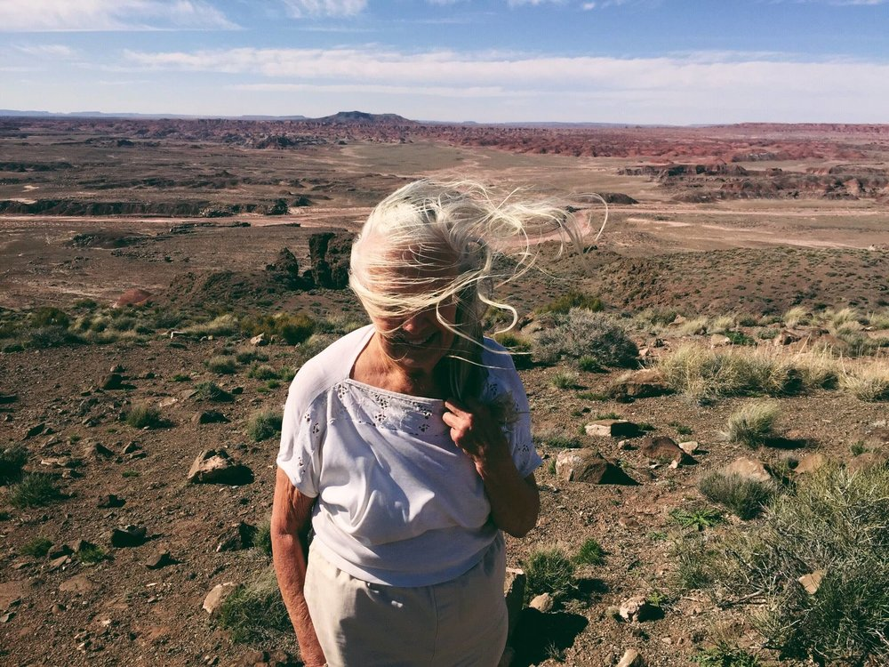 The windblown sun-scorched hills of the painted desert