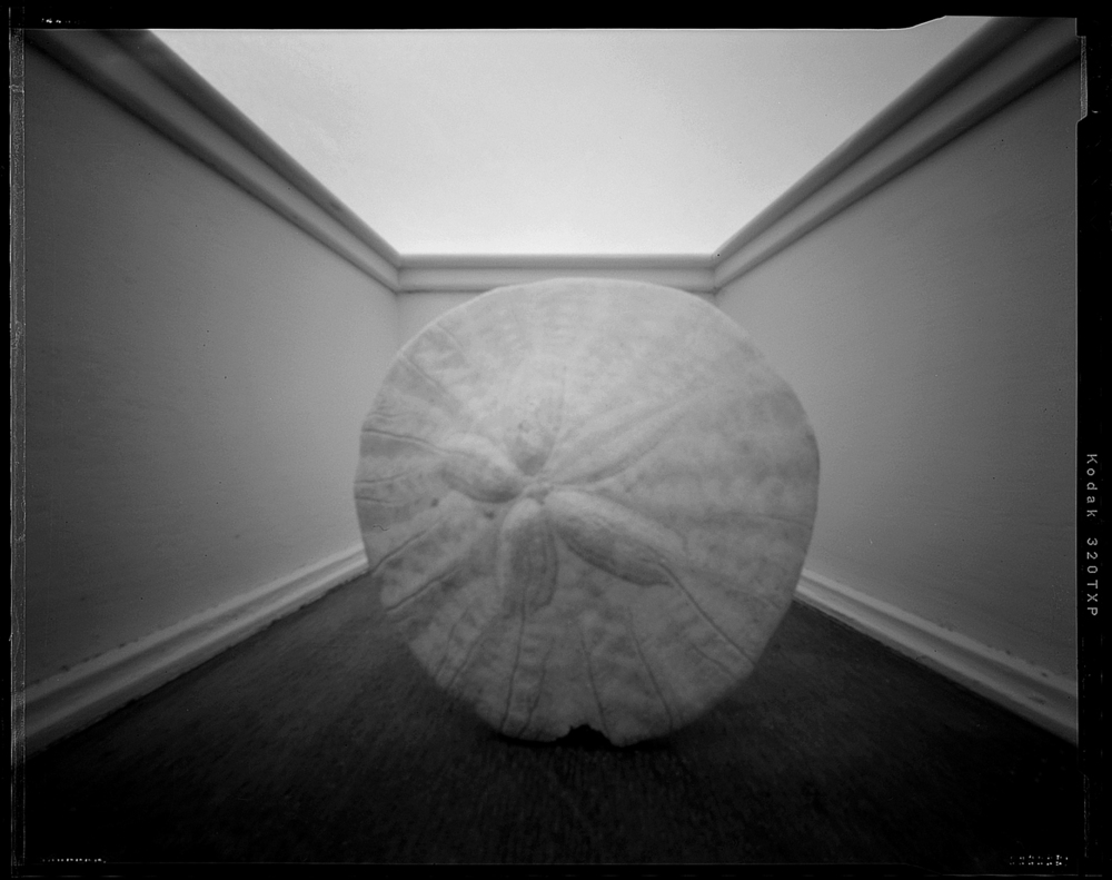 FoundObjects_Pinhole4.1500.jpg