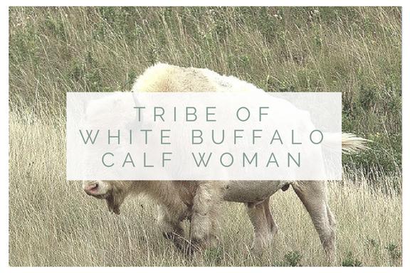WHITE BUFFALO CALF WOMAN.png