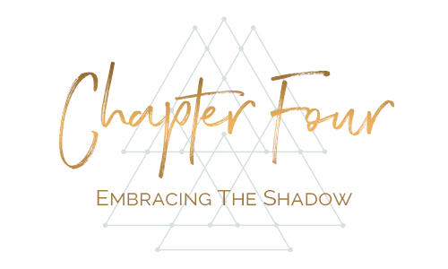 chapter four embracing the shadow.png