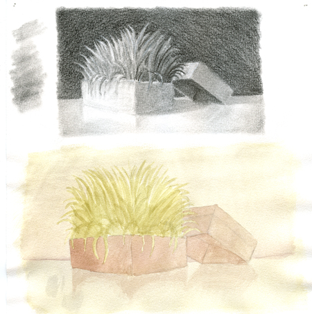 pencil-and-acrylic-grass-tests