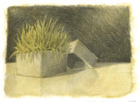 watercolor-grass-box