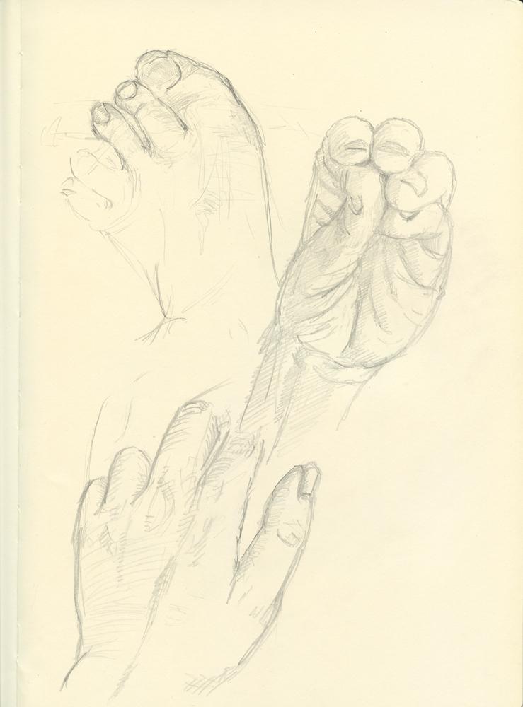 Hands1 web