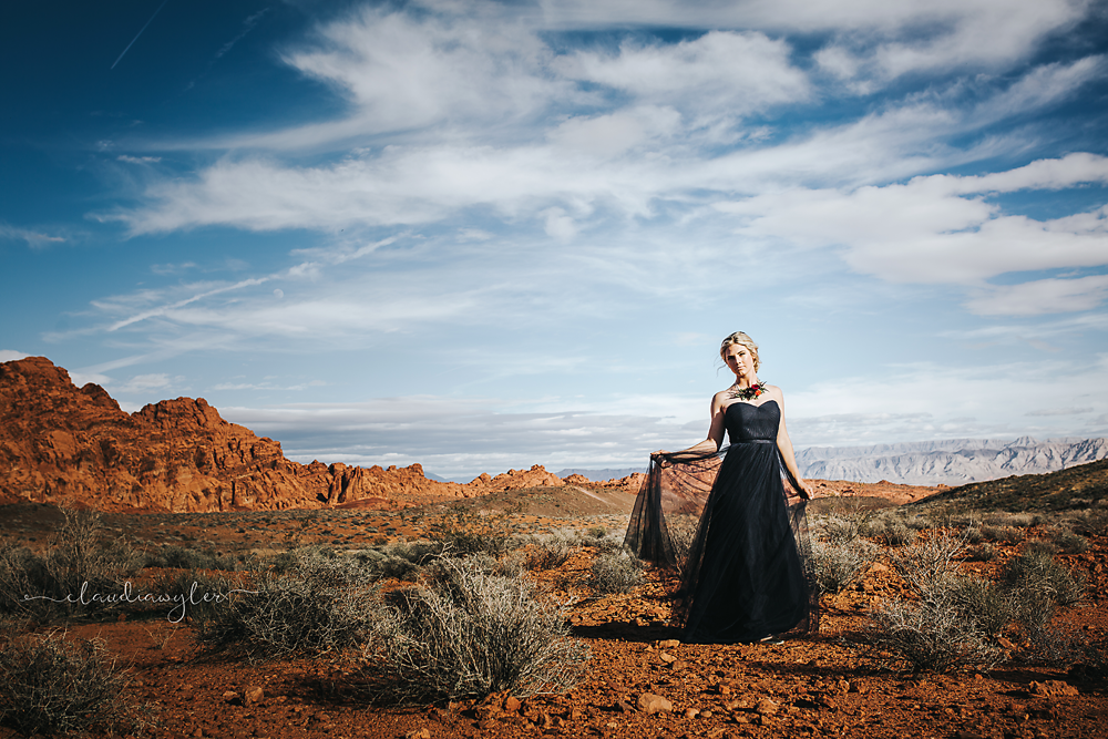 Teen girl in prom dress in desert| Chilliwack, BC | Abbotsford, Langley, Fraser Valley, BC |Family, Prom, Wedding Photographer | Claudia Wyler Photography
