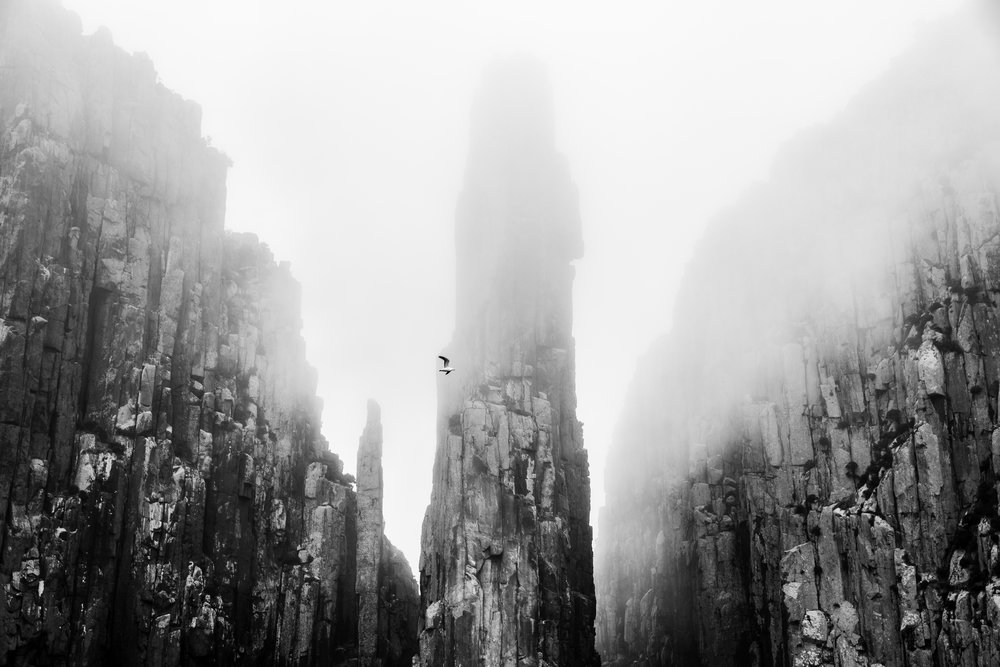 At the Edge of the Worldby Alicia Dunstan.jpg
