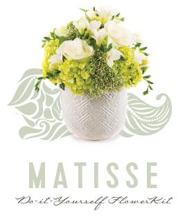 DIY-Products_Matisse.jpg