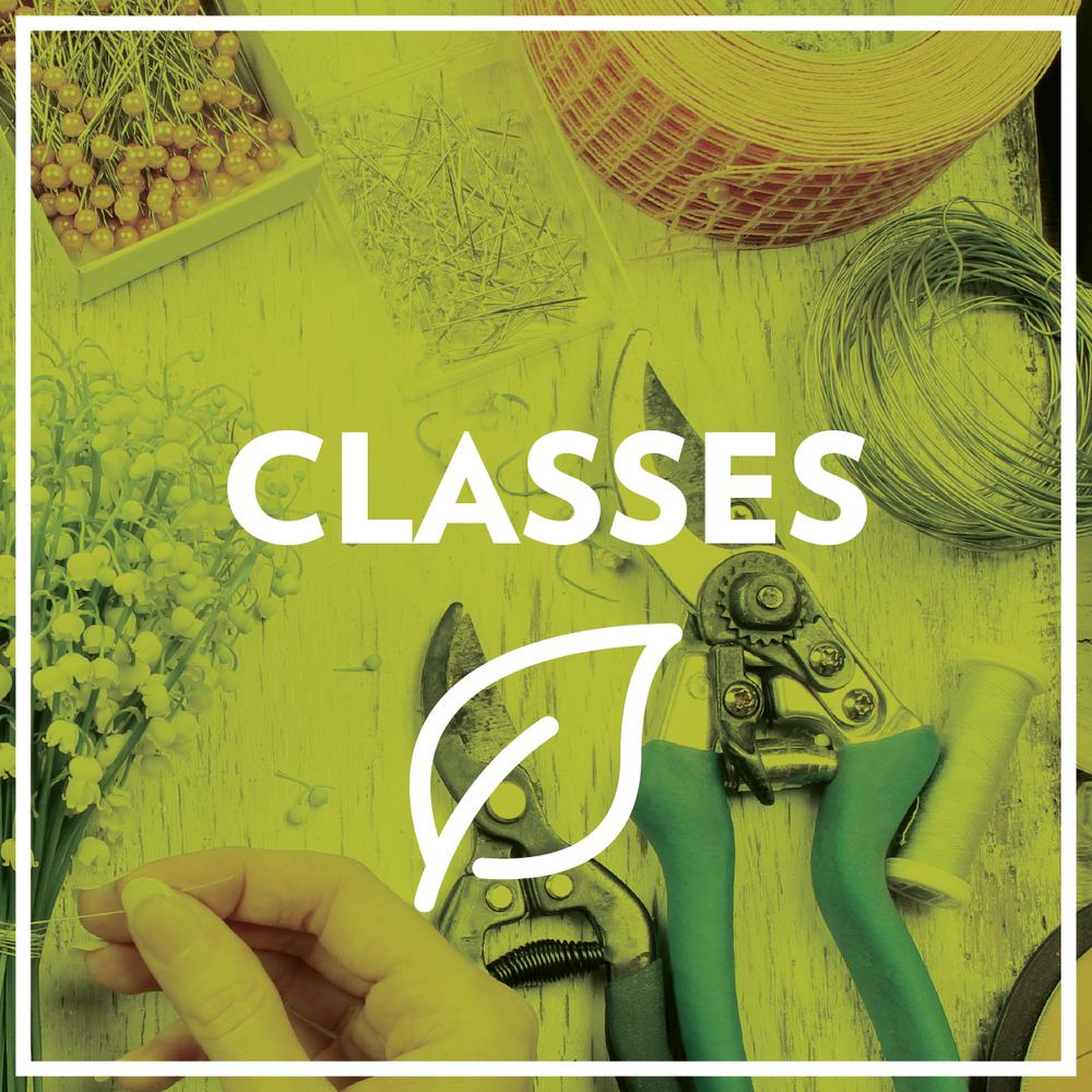 ClassesSquare-07.png