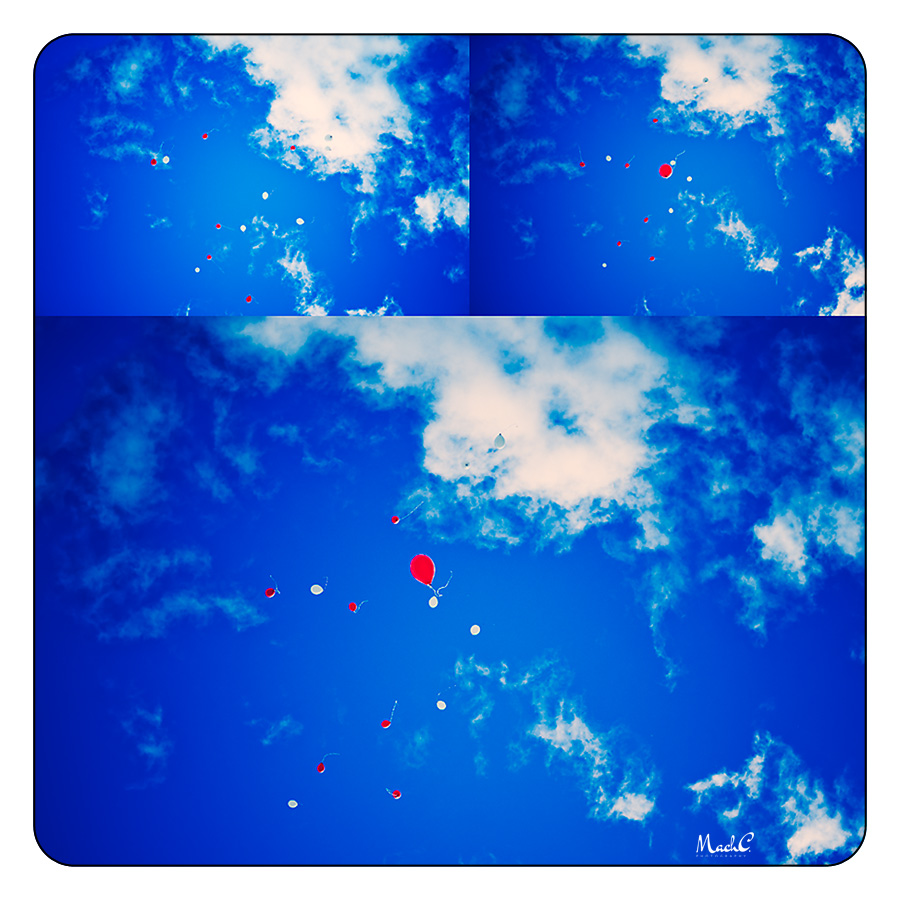 poppy's balloon release