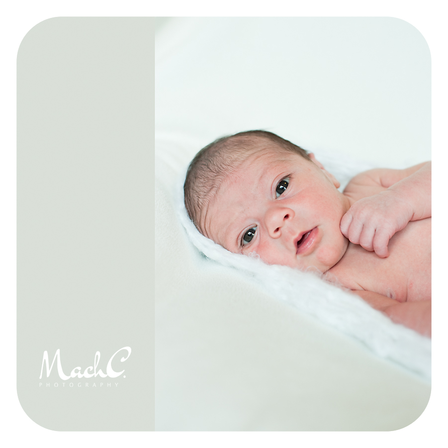 Newborn Photographer Fairbanks