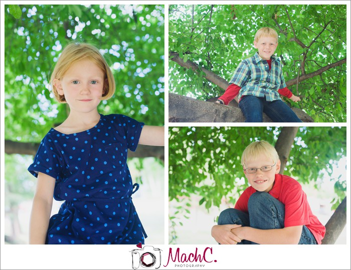 kids photographed climbing trees