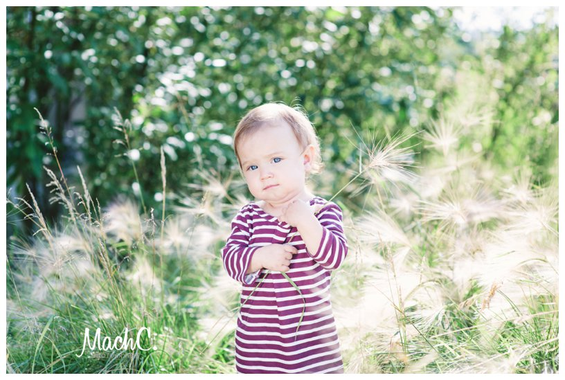 little girl in a field of foxtails