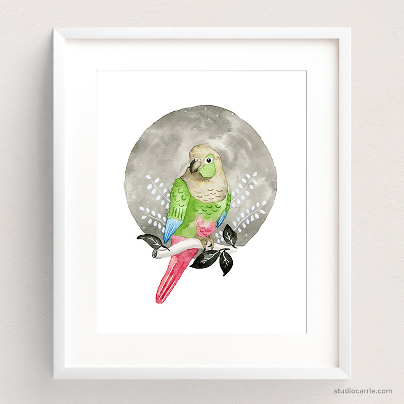 Copy of Green Cheeks Conure Watercolor Art Print by Studio Carrie