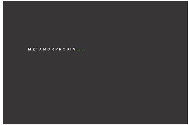 metamorphosis_01.jpg