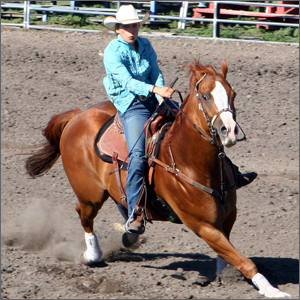 rodeoHorse06.jpg
