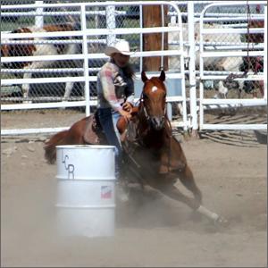 rodeoHorse09.jpg