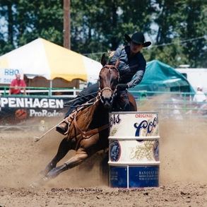 rodeoHorse05.jpg
