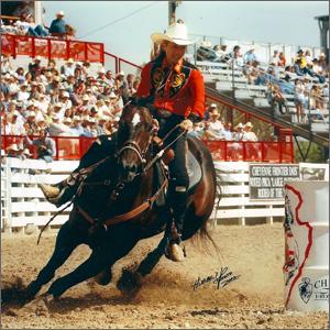 rodeoHorse03.jpg