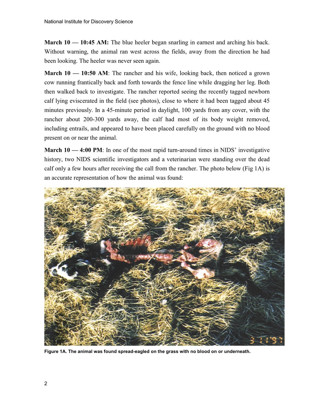 1997 ANIMAL MUTILATION REPORT 1.jpg