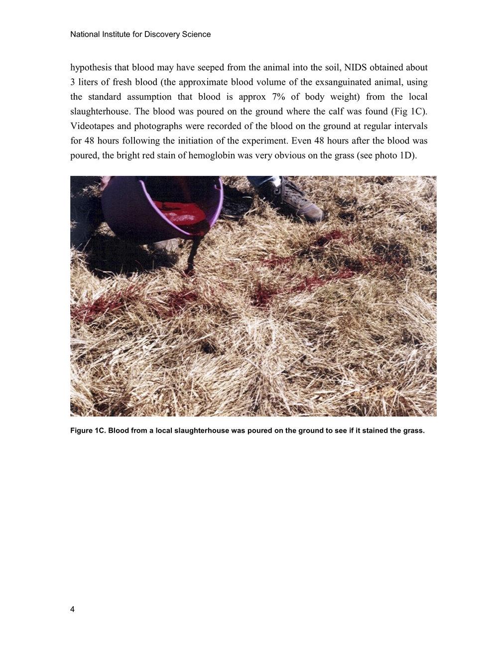 1997 ANIMAL MUTILATION REPORT 3.jpg