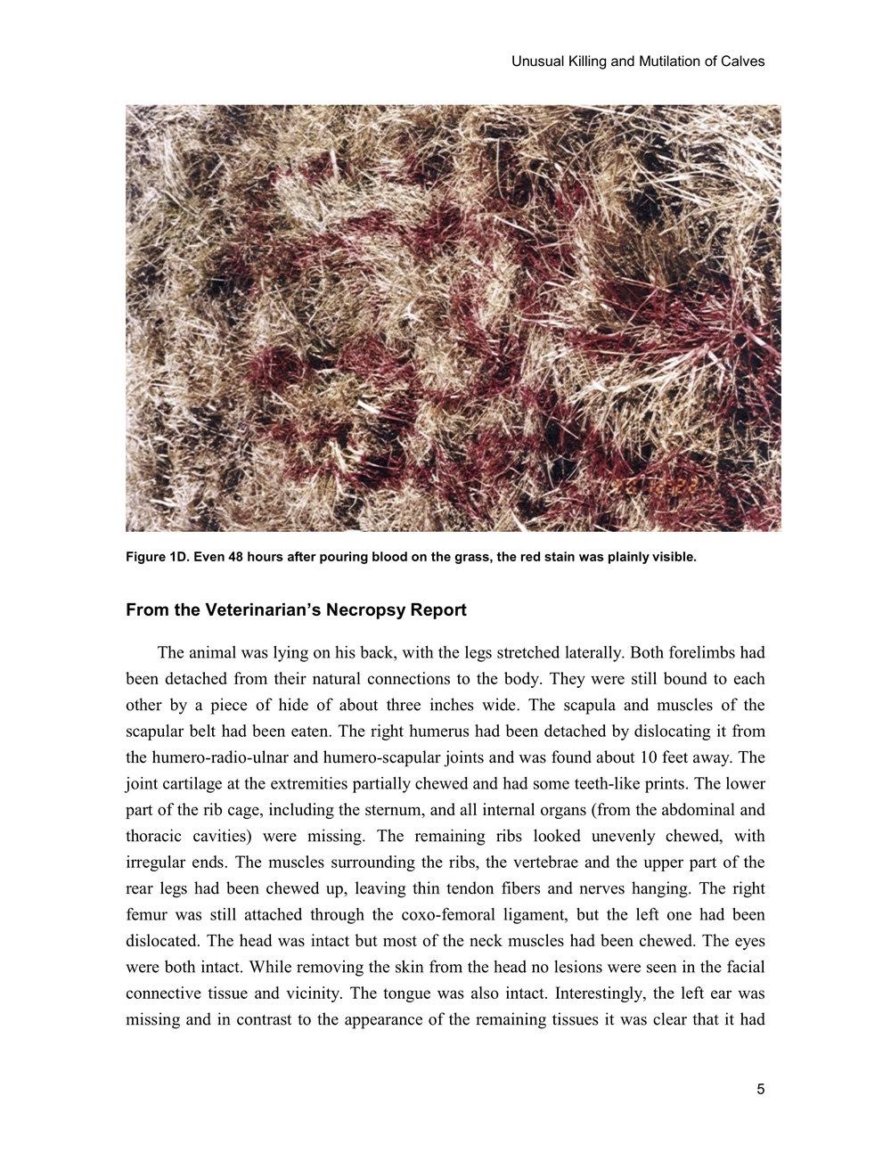 1997 ANIMAL MUTILATION REPORT 4.jpg