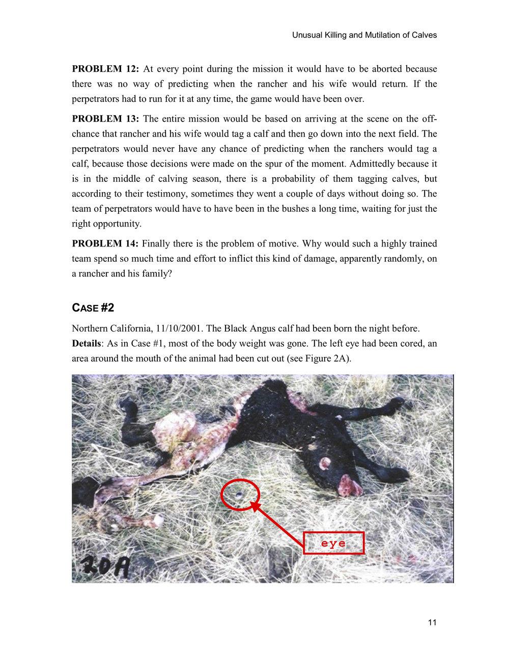 1997 ANIMAL MUTILATION REPORT 10.jpg