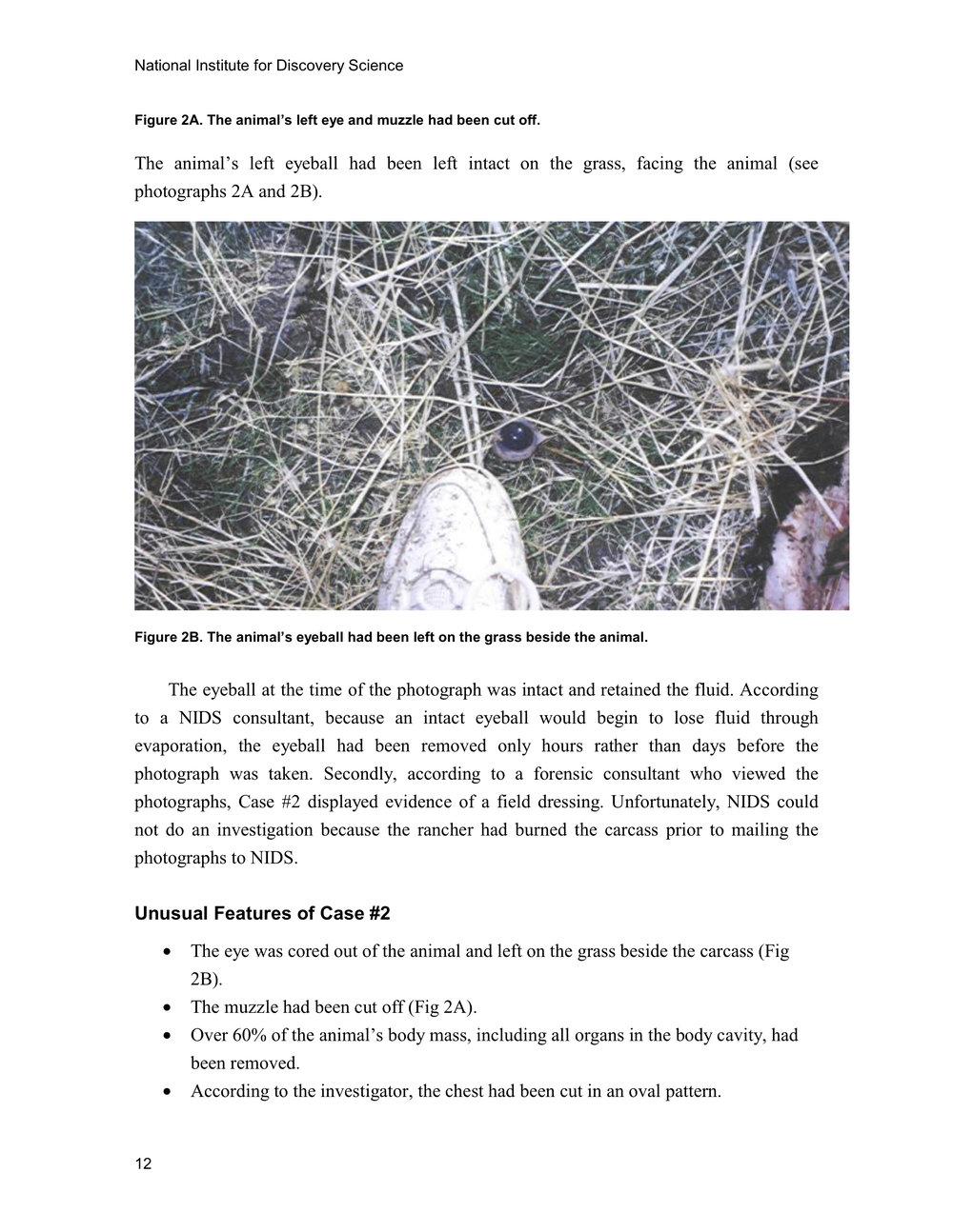 1997 ANIMAL MUTILATION REPORT 11.jpg