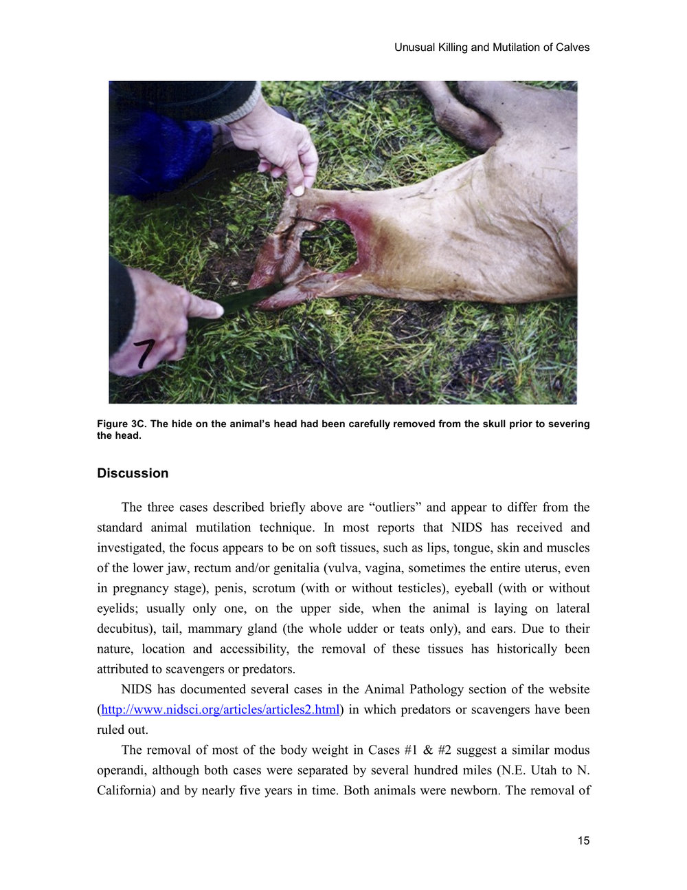 1997 ANIMAL MUTILATION REPORT 14.jpg