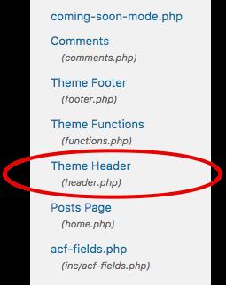 wordpress header file