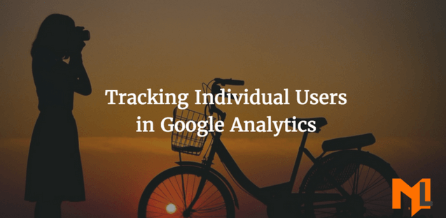 How to track Individual Users in Google Analytics