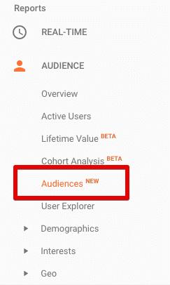 access google analytics audiences