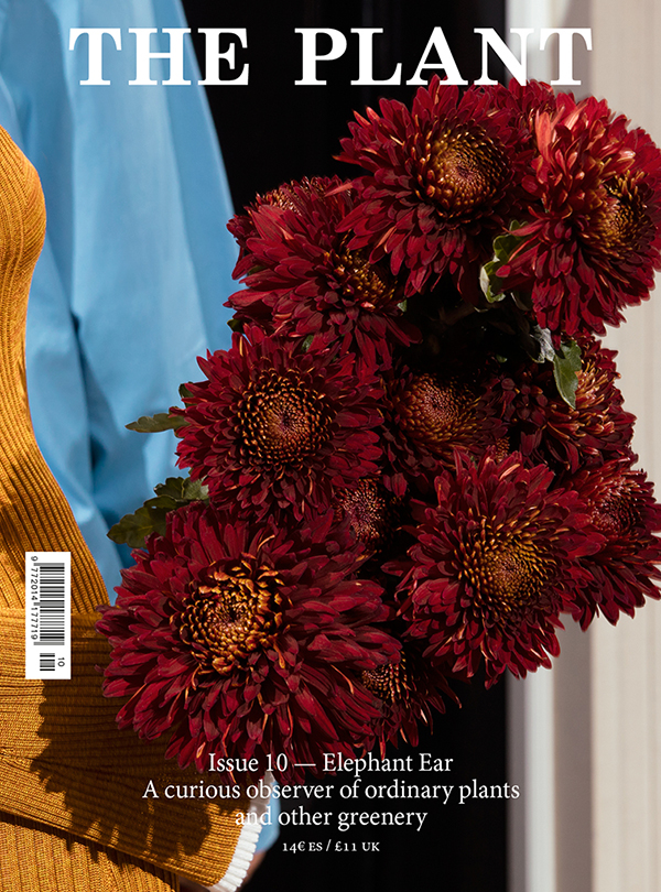 Issue10-Cover_2.jpg