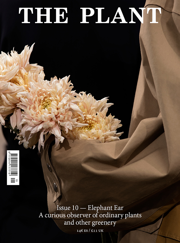 Issue10-Cover_1.jpg