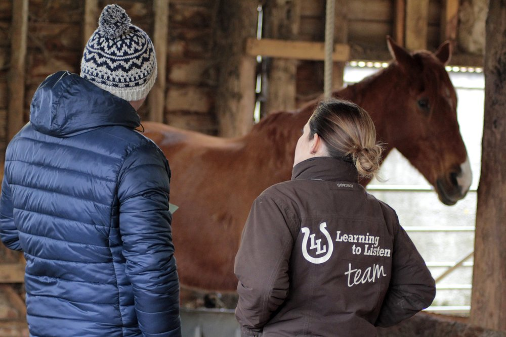 Equine Facilitated Coaching - Tap into the wisdom of the horses and unlock self-limiting beliefs and create your best life yet